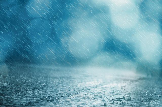 psí počasí
