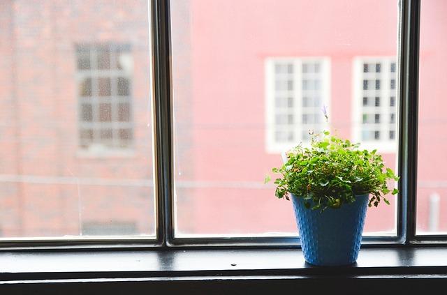 modrý květináč