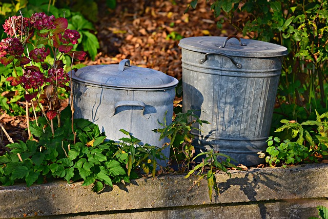 popelnice, komunální odpad